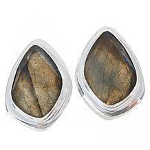 Jay King Sterling Silver Labradorite Freeform Earrings