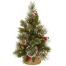 "National Tree 18"" Wintry Pine Small Tree in Burlap Base with 15 LEDs"
