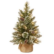 National Tree 2' Glittery Bristle Pine Burlap Tree w 15 WarmWhite LEDs