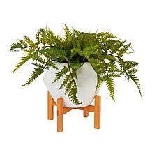 South Street Loft Faux Evergreen Fern in Flower Pot
