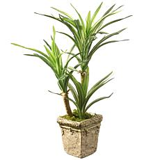 "14"" Artificial Yucca Plant"