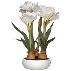 "20"" Artificial White Amaryllis Flowers"