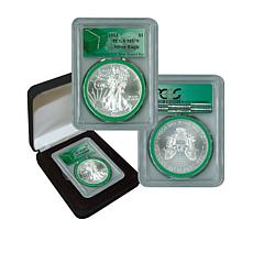 2013 MS70 PCGS Silver Eagle - Monster Box Green Label