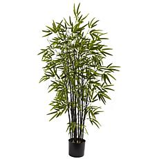 4 Ft. Black Bamboo Tree