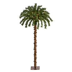 4 ft. Christmas Palm Artificial Tree with 150 Warm White LED Lights