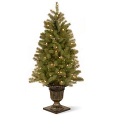 4 ft. FEEL-REAL® Downswept Douglas Fir Entrance Tree with Clear Lights