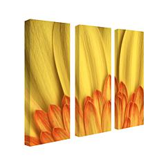 Aiana 'Flame' 3-Panel Canvas Art Set