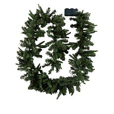 American Tree & Wreath 9' Color-Changing Garland with Remote Control