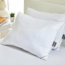 """As Is"" Concierge Collection CoolMax® 2-pack King Pillows"