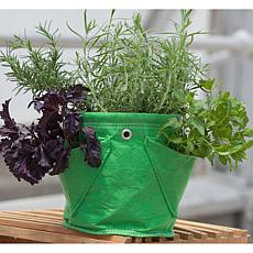 BloemBagz Mini Herb Planter Bag 1.5 Gallon