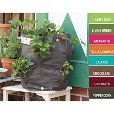 BloemBagz Strawberry Planter Bag 9 Gallon
