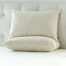 Concierge Collection 2-pack 100% Organic Cotton Pillows - Jumbo