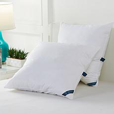 Concierge Collection Euro Pillow Inserts 2-pack