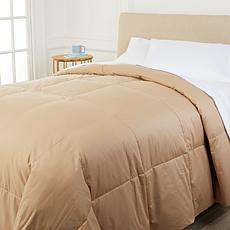 Concierge Collection Platinum 400TC Cotton Goose Down Comforter - King