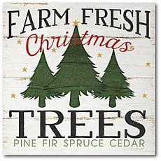 Courtside Market Farm Fresh Christmas Trees 24x24 Canvas Wall Art