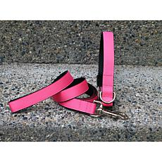 Isabella Cane Extra Small Pink Collar-Leash Set