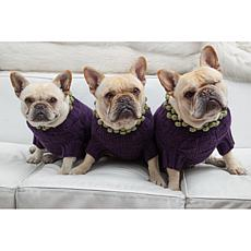 Isabella Cane Purple Dog Sweater with Pom Poms