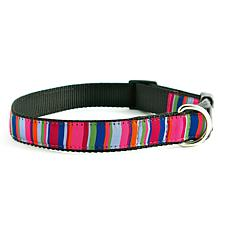 Isabella Cane ZZ-Stripe-M Dog Collar