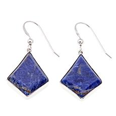 Jay King Sodalite Drop Sterling Silver Earrings