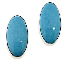Jay King Sterling Silver Andean Blue Turquoise Oval Earrings