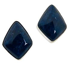 Jay King Sterling Silver Blue Apatite Stud Earrings