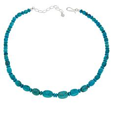 Jay King Sterling Silver Cloudy Mountain Turquoise Necklace