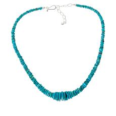 Jay King Sterling Silver Royal Blue Turquoise Bead Necklace