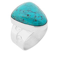 Jay King Sterling Silver Spider Web Turquoise Ring
