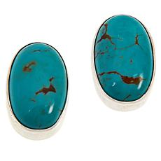 Jay King Sterling Silver Turquoise Oval Stud Earrings