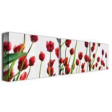 """Michelle Calkins """"Red Tulips from Bottom Up"""" Print"""