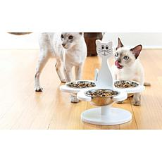 Multi-Cat Raised Pet Feeder