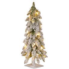 National Tree 2' Snowy Downswept Forestree w Metal Plate & 50 Lights