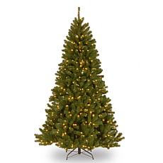 National Tree 7' North Valley Spruce Hinged Tree with 500 Clear Lights