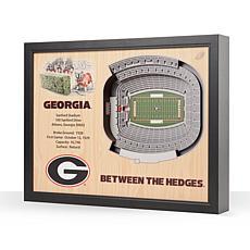 NCAA Georgia Bulldogs StadiumViews 3-D Wall Art - Sanford Stadium