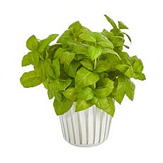 """Nearly Natural 10"""" Basil Artificial Plant in White Planter"""