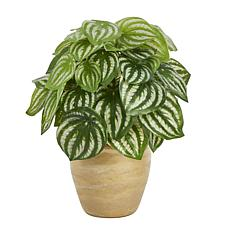 """Nearly Natural 11"""" Watermelon Peperomia Artificial Plant (Real Touch)"""