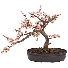 Nearly Natural Silk Cherry Blossom Bonsai  Arrangement