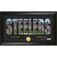 NFL Bronze Coin Panoramic Photo Mint - Steelers
