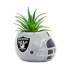 Officially Licensed NFL 2-pack Planter - Oakland Raiders