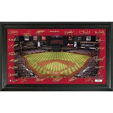 Officially Licensed Signature Field Limited Edition Frame-Diamondbacks