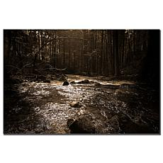 "Philippe Sainte-Laudy ""The River"" Print"