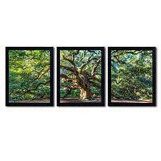 Pierre Leclerc 'Angel Oak Charleston' Art Collection