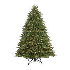 Puleo 6-1/2 ft. Pre-Lit Davidson Fir Premier Artificial Christmas Tree