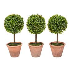 Pure Garden 3-Piece Potted Realistic Faux Boxwood Topiary