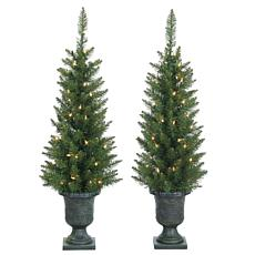 Set of 2 3-1/2' Potted Norway Pine Tree - 50 Clear Lights
