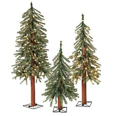 Set of 3 Pre-Lit Alpine Trees with Metal Wire Base
