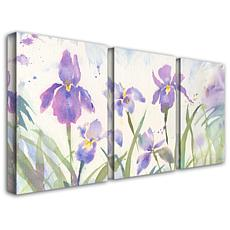 "Sheila Golden ""June Iris"" Giclée-Print Set"