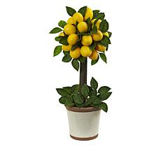 "South Street Loft 18"" Lemon Tree in a Decorative Pot"