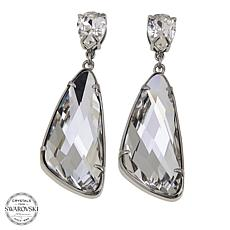 Stately Steel Crystal Multishaped Drop Earrings