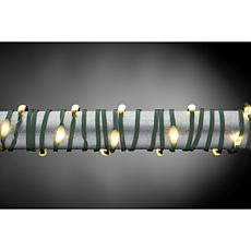 The Gerson Company 50-foot Warm White Micro LED, Green String